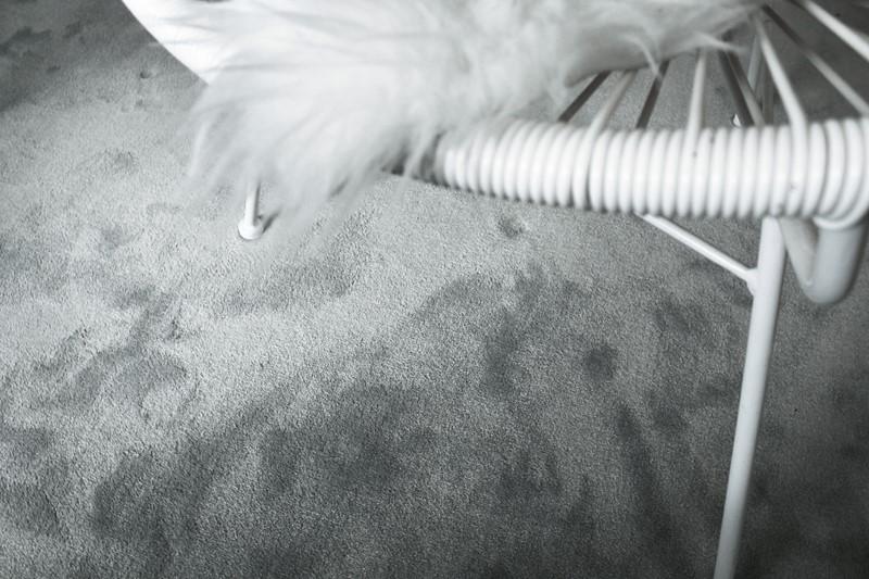 Teppegulv-avalon-happyhomes